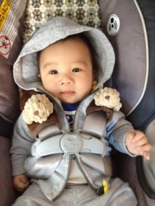 Baby LRC loves going out for a walk in his stroller.