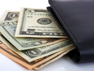how much is in your wallet living rich cheaply